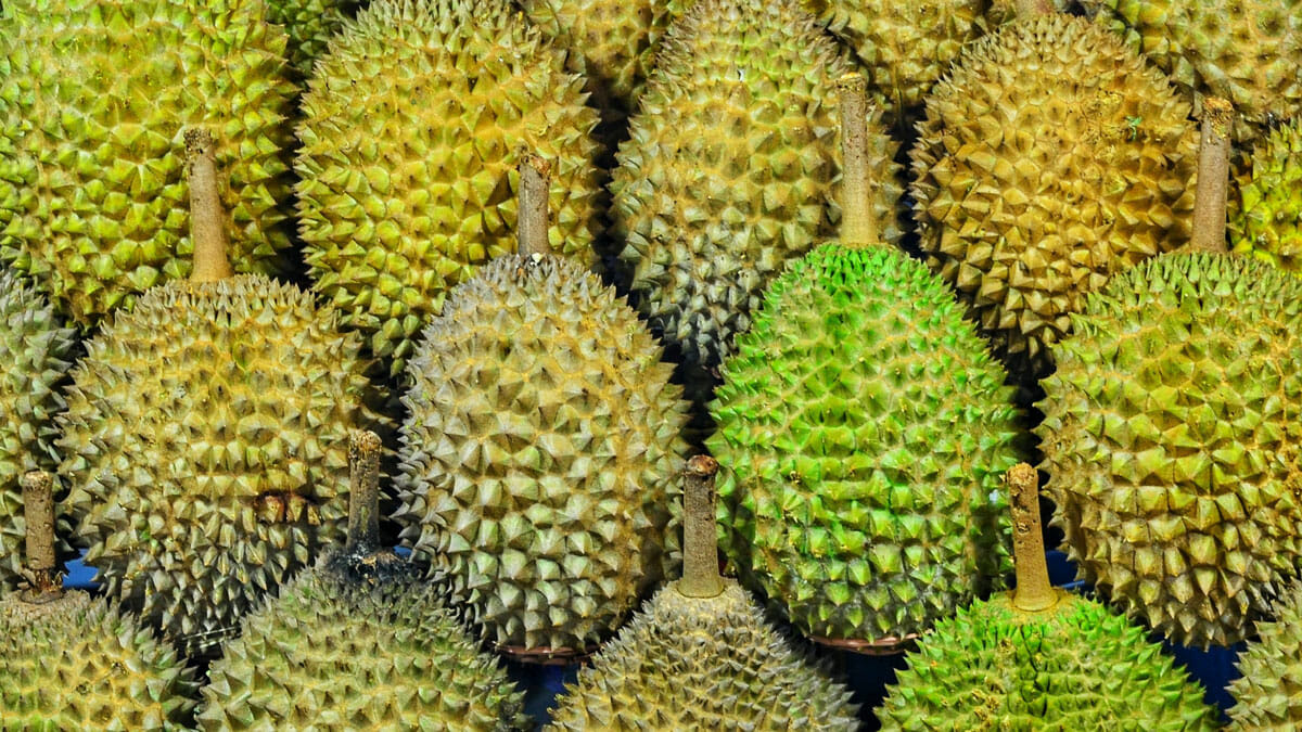 Shopee 6.6 Super Sale Durians